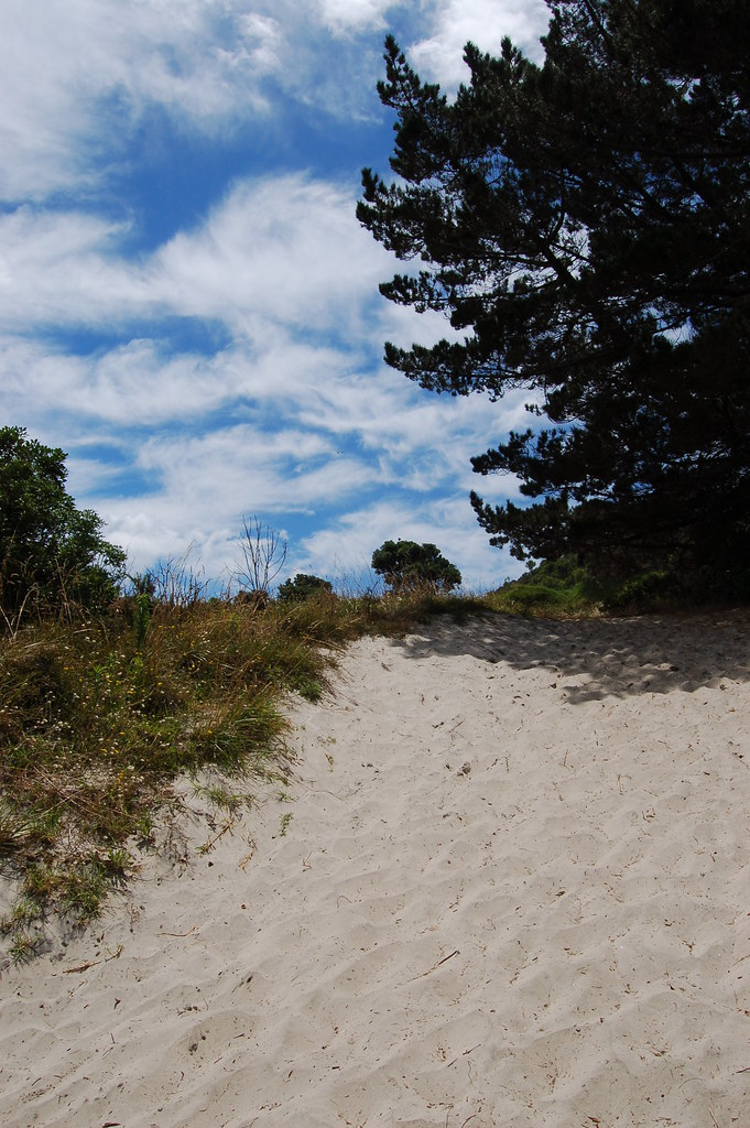 2009 Jan NZ Far North 035