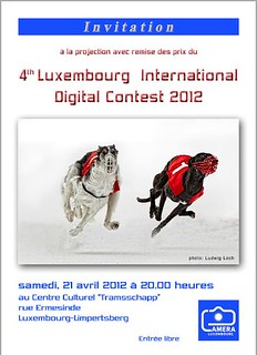 4-th Luxembourg International Digital Contest Public Showing and Awards Ceremony | by Skytalker777