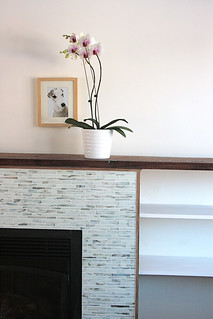 Fireplace built-ins | by tanislavallee