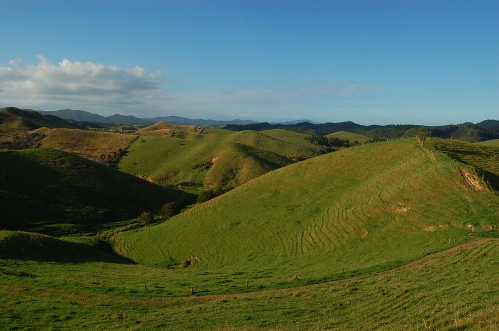 2009 Jan NZ Far North 116