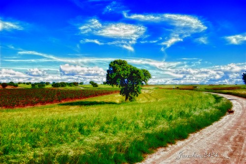 Campos de Toledo | by josechino2424