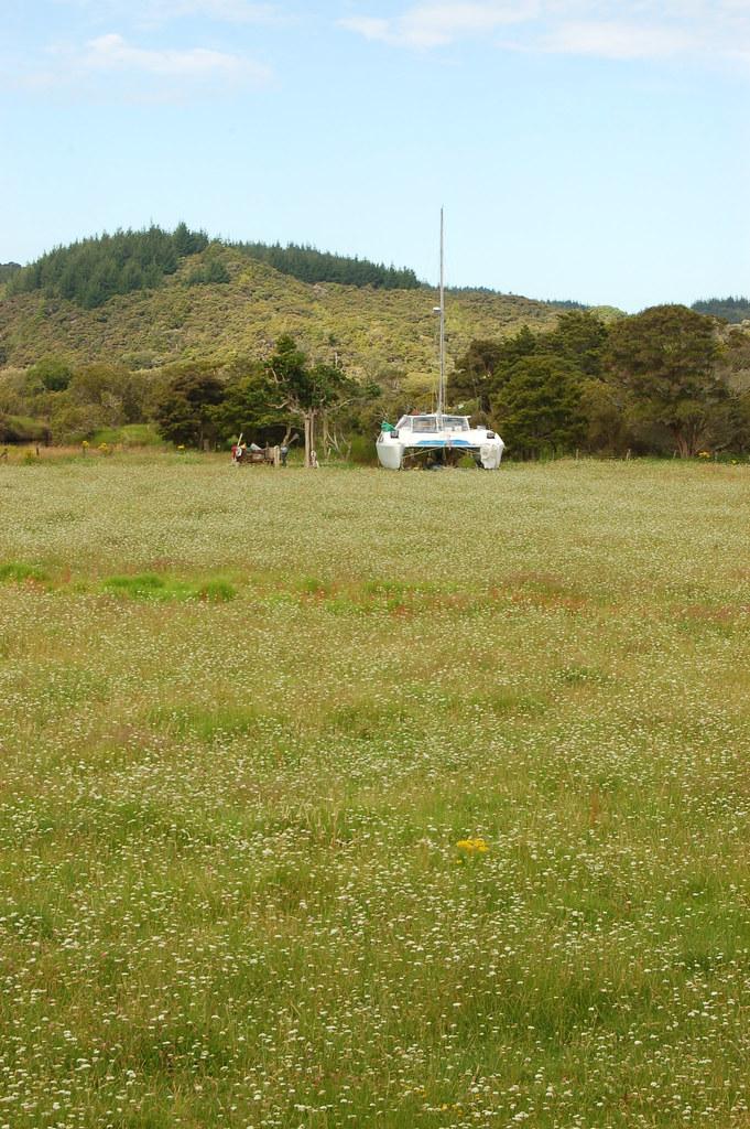 2009 Jan NZ Far North 060