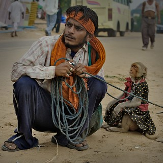 Pushkar - Monkey man | by ☆ j é r e n