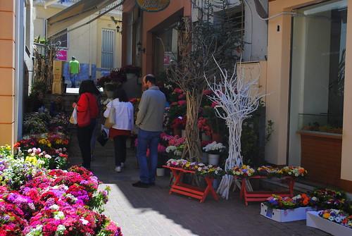 Το καλντερίμι των λουλουδιών