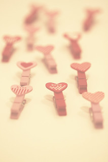 march of the pegs...  happy valentine's day!! | by Morningdew Photography
