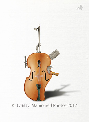 Rifle Violin | by KittyBitty: Manicured Photos