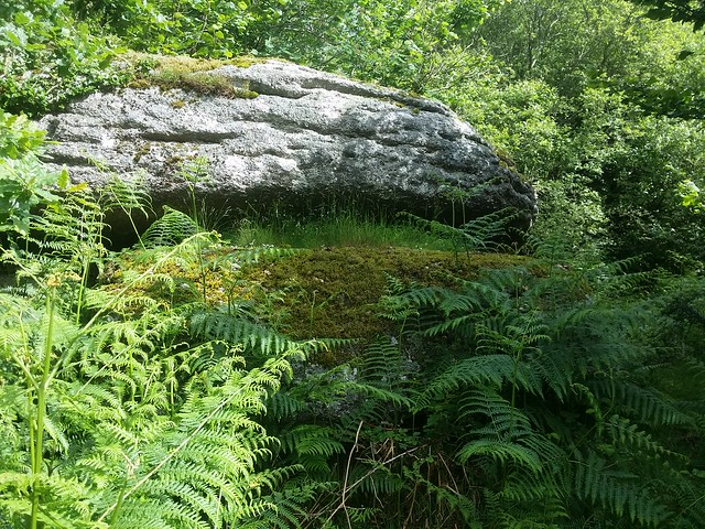 Rugglestone Rock, Dartmoor