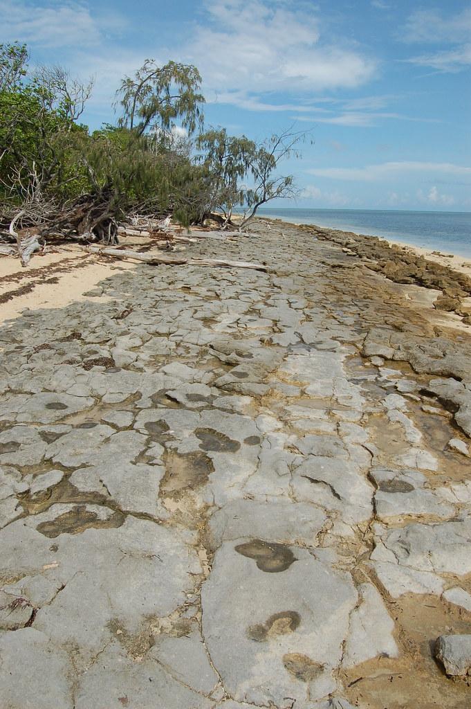 Australia / Great Barrier Reef / Green Island - 05