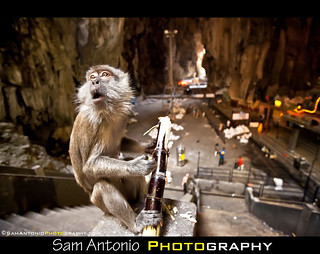 The Batu Caves Stink...Really Stink! | by Sam Antonio Photography