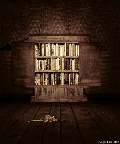 The Library | by rubyblossom.