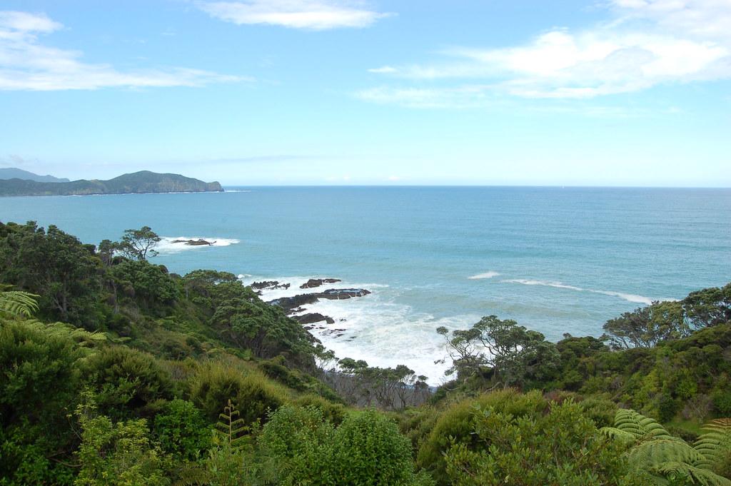 2009 Jan NZ Far North 063