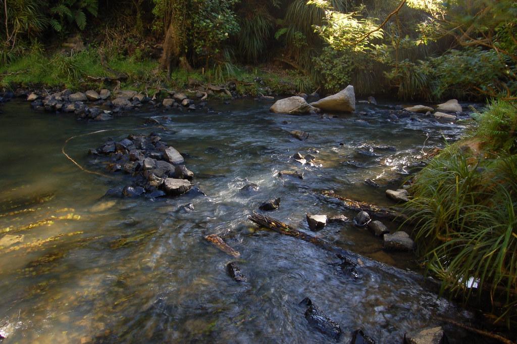 2008 Jan NZ Bridal Veil Falls 030