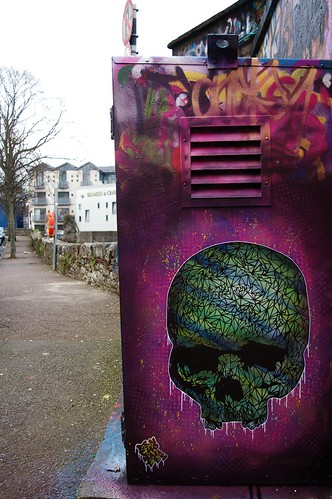 Dripping Skull (Cork) | by psychonautes