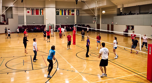 Image result for IM Volleyball NCSU