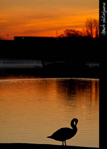 Sunrise | Yeadon Tarn - 27th March 2012 | by Mark Winterbourne | markwinterbourne.com