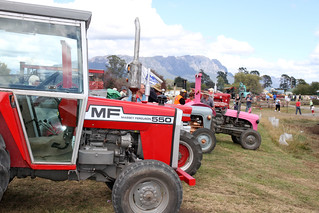 Tractors ready for the pull | by ABC Open Northern Tasmania