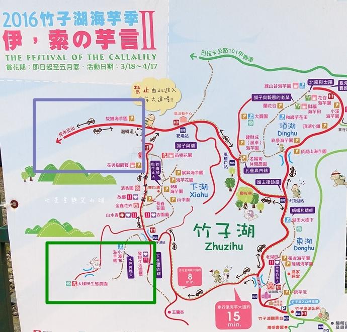 1 陽明山 青菜園 野菜餐廳 繡球花