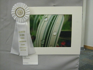2012 Winterfest Student - Honorable Mention | by chelmsfordpubliclibrary