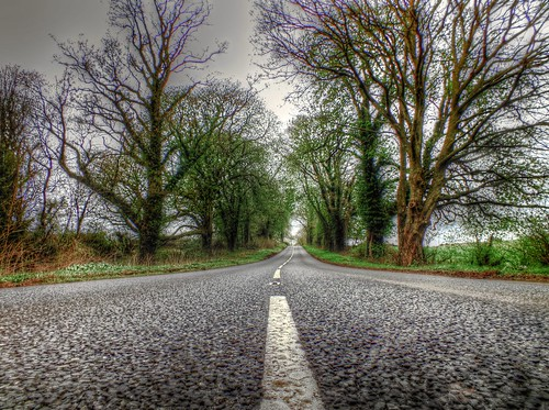 The road, la route, estrada, carretera  (HDR) | by Adelino Goncalves
