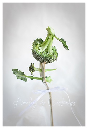 Broccoli | by Cintamani, GreenMorning.pl