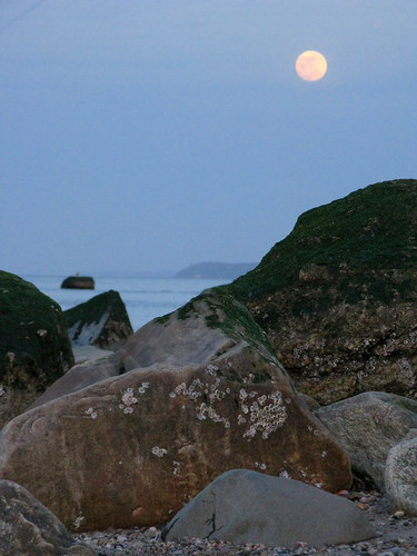 Moonrise | by ...robert joseph...
