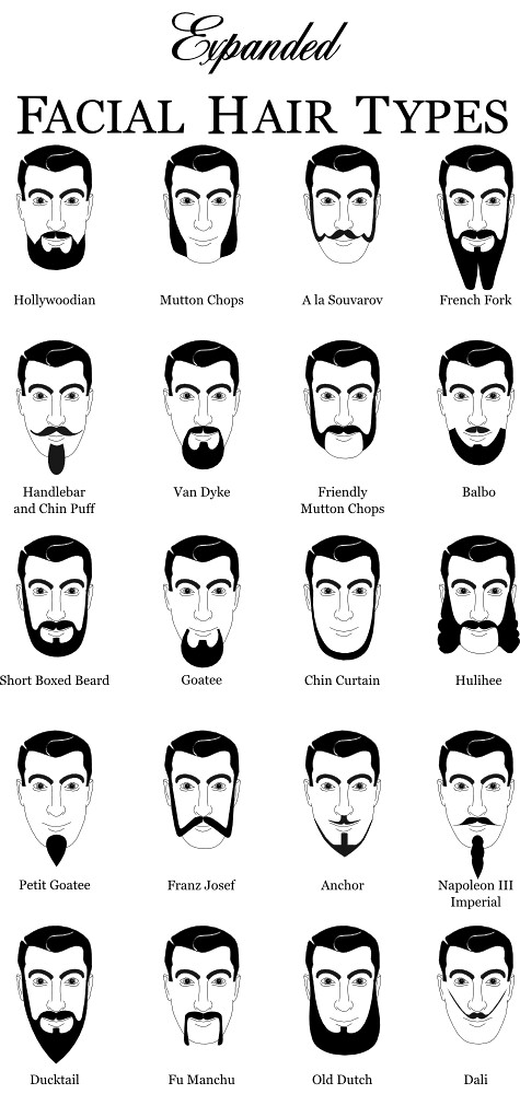 Natural Hair Types Chart: Expanded Facial Hair Types 1 | www.dyers.org/blog/beards/beau2026 | Flickr,Chart