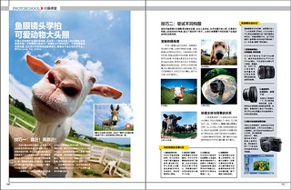 Mr Goat in Chinese photography magazine | by Shenanigans in Japan
