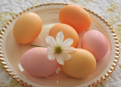 Pastel eggs of course | by havin fun with photos