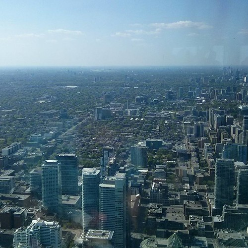 Looking north #toronto #cntower
