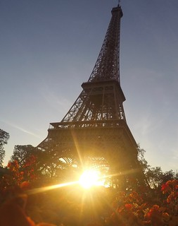 Some sunshine from Paris | by Suvarna S Krishnan