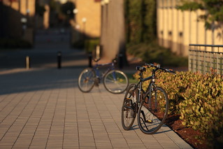 Bicycles | by John Loo
