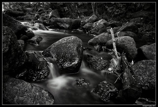 Wainui Camp River | by Geoff Trotter