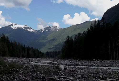 Carbon River valley | by brewbooks