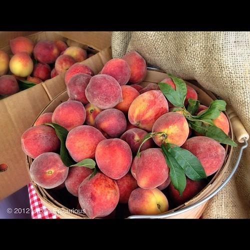 Whole Foods E Hauston