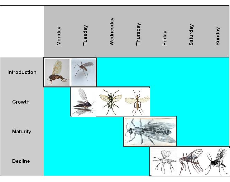 Gnat chart written in a student assignment finally the flickr