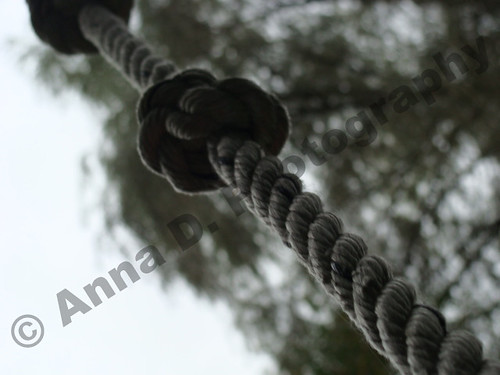 rope | by Anna D. Photographs