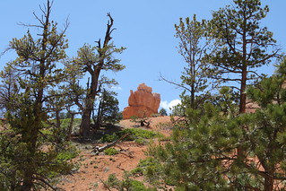 Teapot Dome | by ericdapan