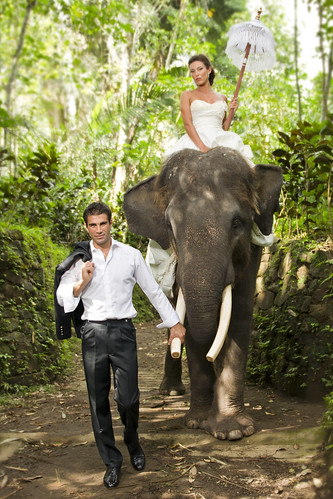 Bali, Elephant Safari - Pre Wedding | by Mio Cade