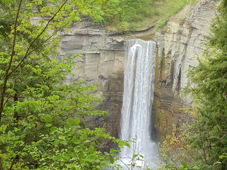 TAUGHANNOCK FALLS NEXT ON NORTH RIM TRAIL!! | by Birder23