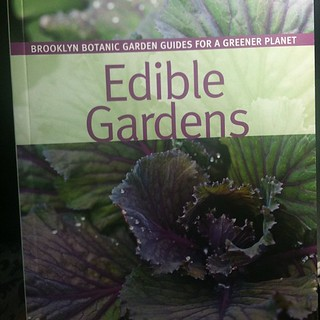 A bunch of my photos are in this Brooklyn Botanic Garden Guide | by yougrowgirl