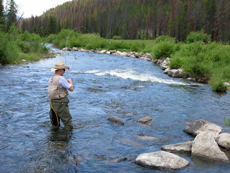 Fly fishing in greer az little colorado river greer for Colorado river fly fishing