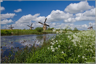 National Mills Day in Kinderdijk | by Wim Boon (wimzilver)
