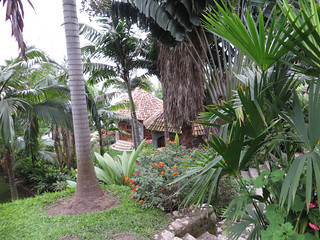 Palm Garden Resort in Gisenyi, Rwanda | by debbieann