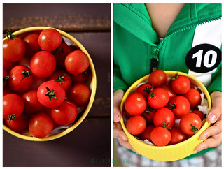 Tomato - Fresh from the Garden | by FijazZ