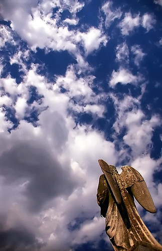 "Cincinnati - Spring Grove Cemetery & Arboretum ""Angel - Into the Clouds"" 