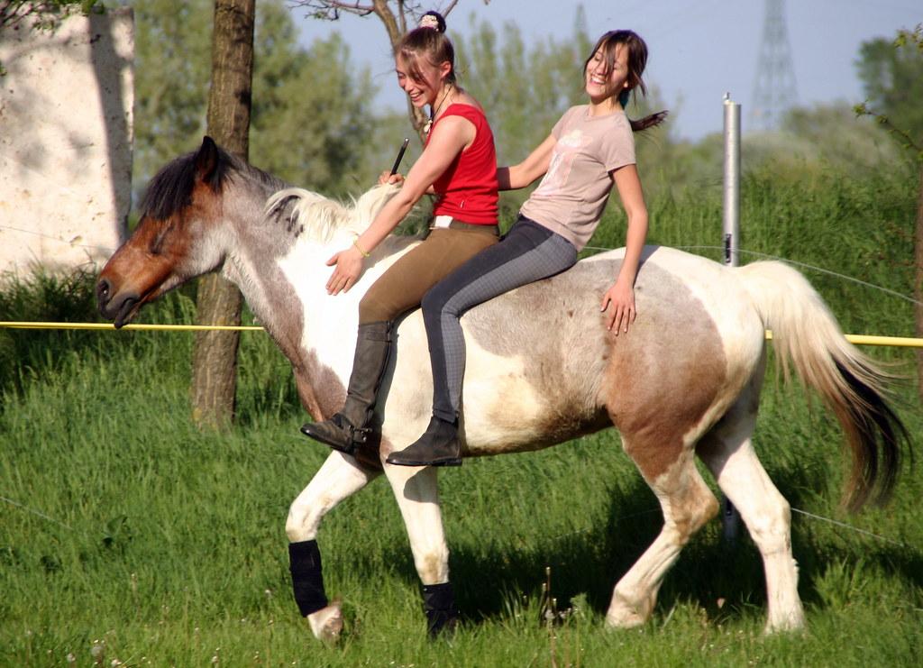2 Girls 1 Horse Lot Of Fun