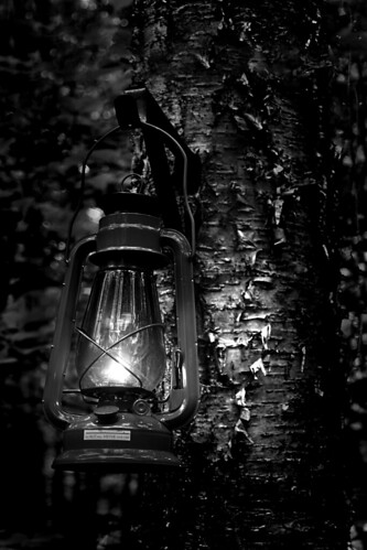 Lantern at dusk | by Hobo W149