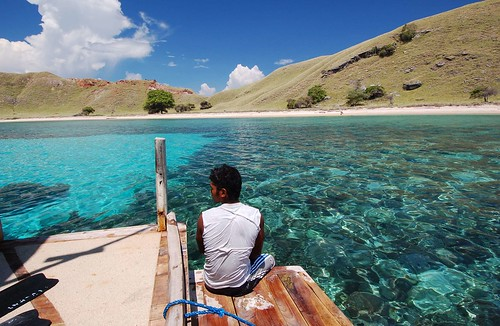 Komodo Island, Indonesia | by Valesub