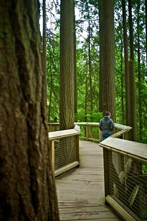 Matthew Smith in a quiet moment at the Capilano Suspension Bridge | by jontangerine