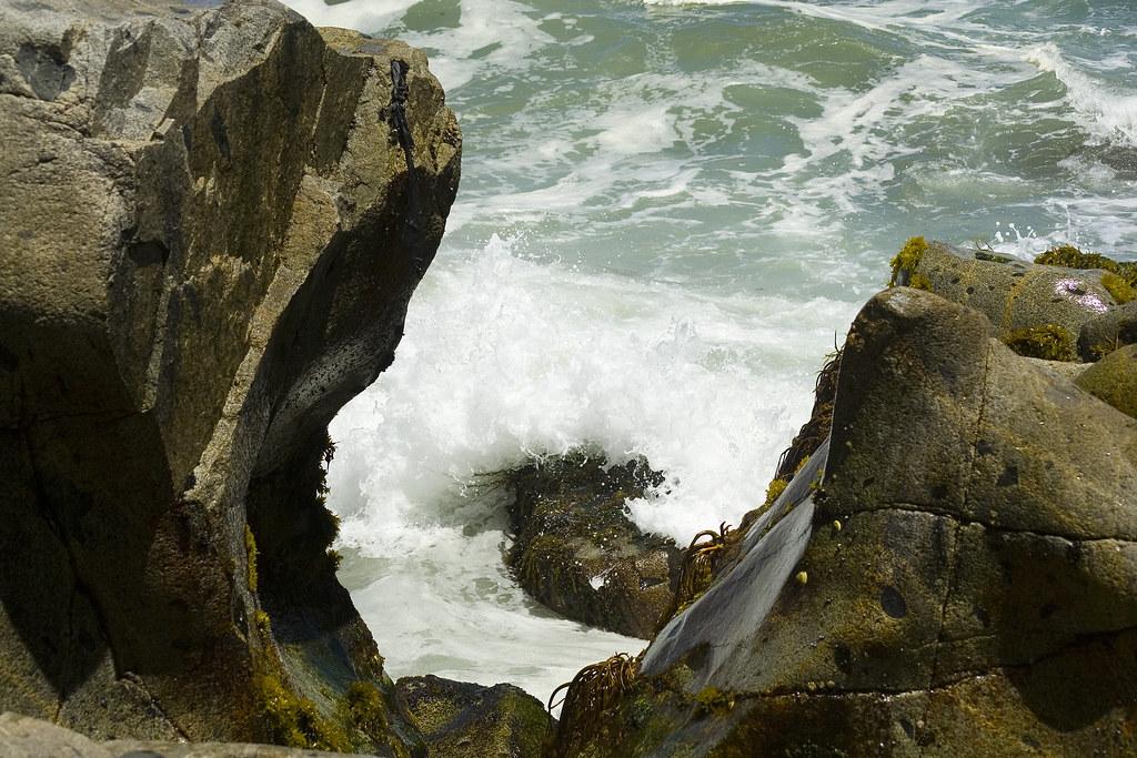 Roquerío (roquedal) / Rocks